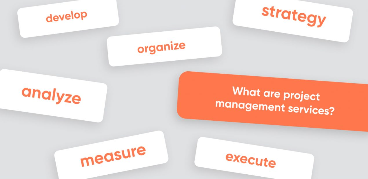Professional services: project management for a startup