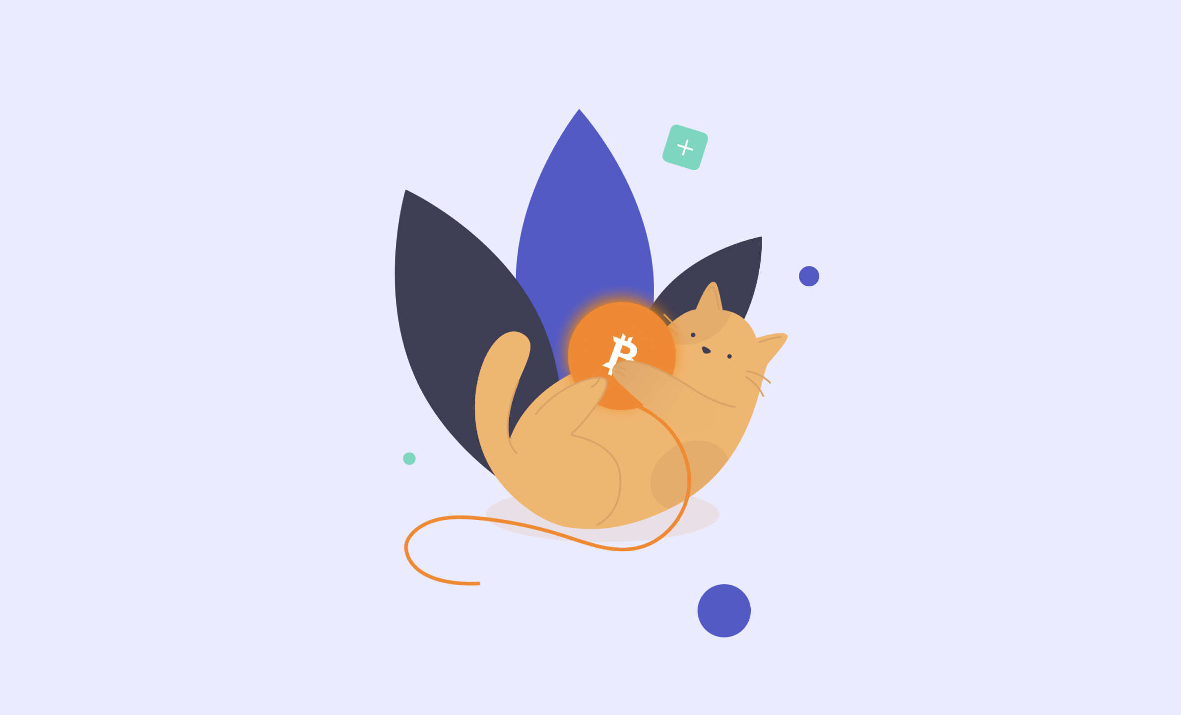 cryptocurrency wallet development: purrweb's mark on the project
