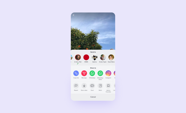 How to make a social media app — TikTok